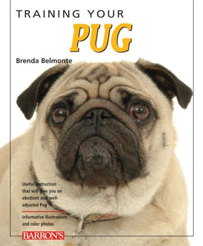 royal canin pug food feeding guide your pug your your