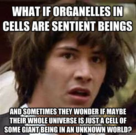 Pictures Memes - what if organelles in cells are sentient beings and