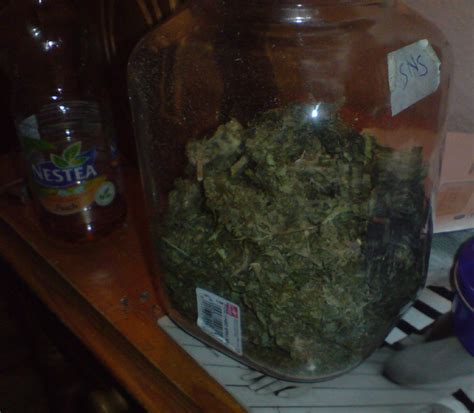 Hn Pot Stiker Isi 30gram a jar of picture ebaum s world