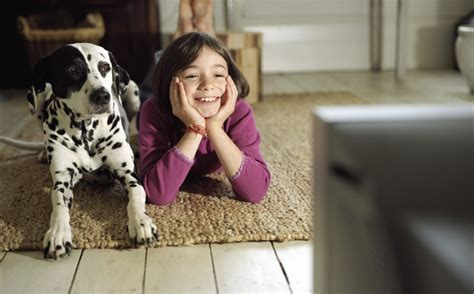 do dogs tv do your dogs television here s what science has to say ntd tv