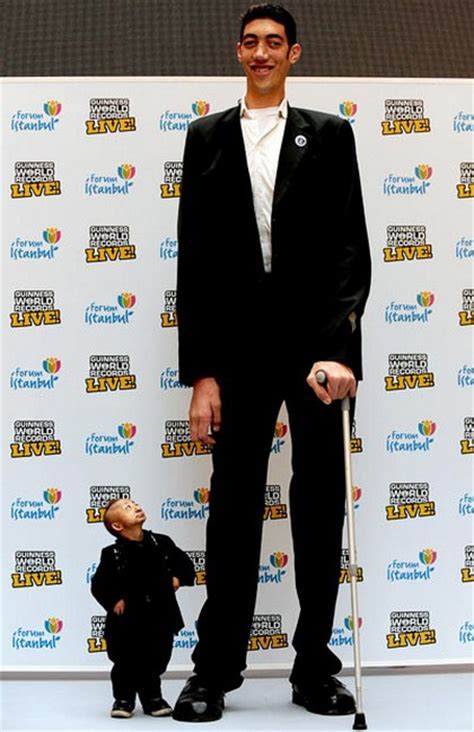 The Tallest Alive by Stuffs Top 10 Tallest Alive 2012