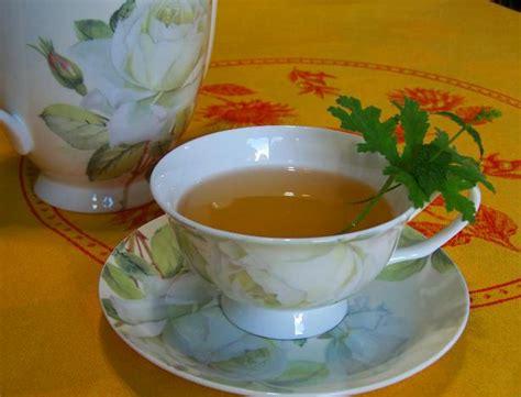 virginias refreshing geranium tea cooler recipe food com