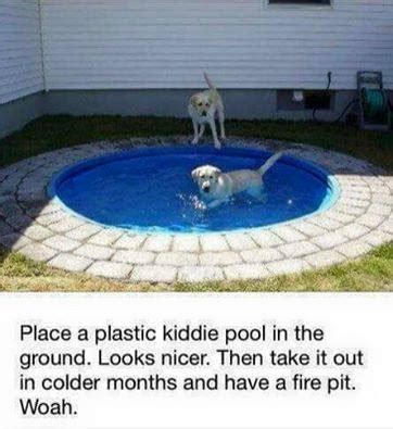 diy pool you to see this one pupbuzz