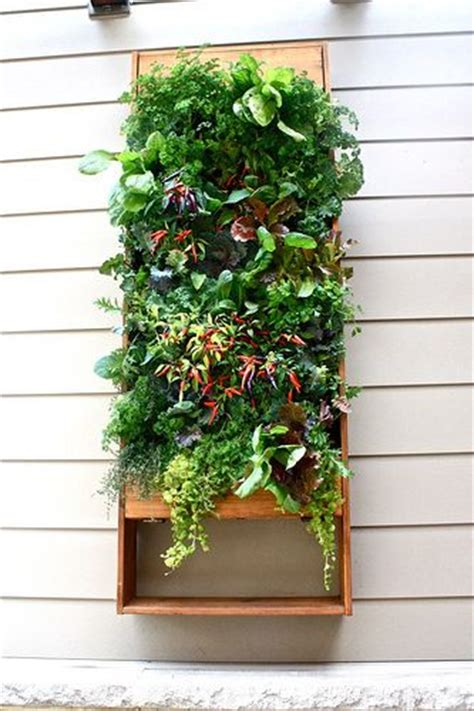 Vertical Herb Garden Apartment 42 Best Images About Garden Dreams On