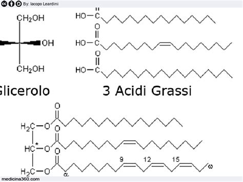 alimenti per colesterolo e trigliceridi alti alimenti per trigliceridi alti colesterolo alto cosa