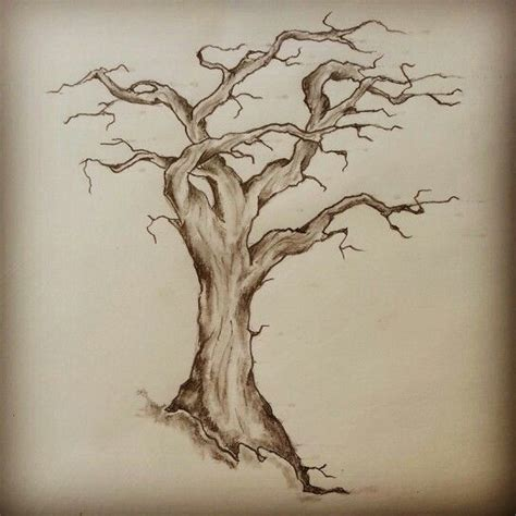 old tree tattoo tree sketch by ranz sketches
