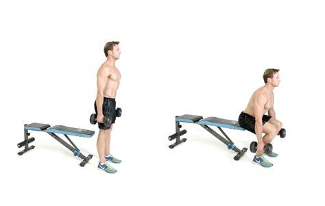 dumbbell bench squat dumbbell bench squat 28 images dumbbell split images