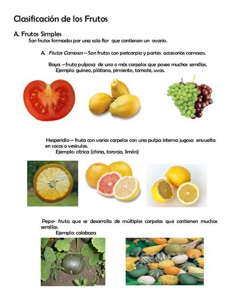 imagenes de semillas varias modulo 9 los frutos