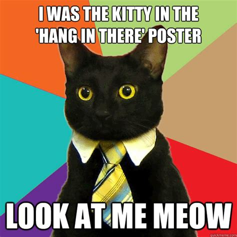Poster Meme - i was the kitty in quot the hang in there quot poster cat meme