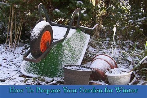 How To Prepare Your Garden For Winter Home And Gardening Preparing Your Vegetable Garden For Winter