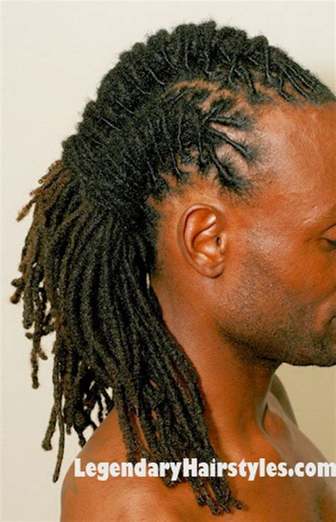 hairstyle braids dreads dreadlocks braided hairstyles