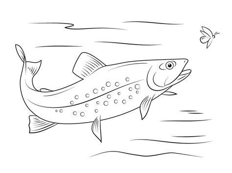 Ausmalbilder Forellen Zum Ausdrucken Kostenlos F 252 R Dessin A Colorier De Requin Blanc L