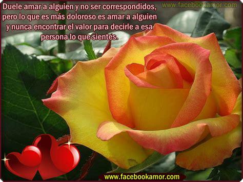 las mas hermosas fotos de rosas con poemas de amor poemas de amor con flores im 225 genes de flores con
