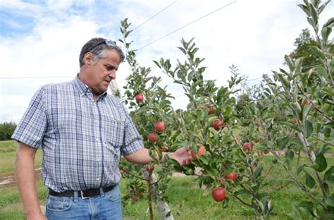 circle r fruit farms circle r puts emphasis on quality produce orleans hub