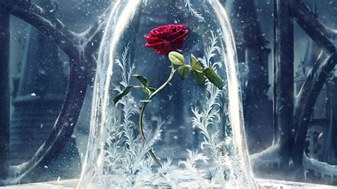 disney wallpaper beauty and the beast wallpaper beauty and the beast 2017 movies disney rose