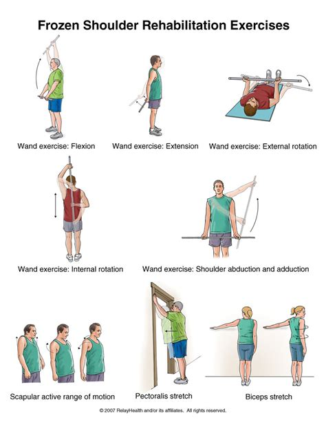 Sport Therapy For The Shoulder Evaluation Rehabilitation And Return frozen shoulder or stiff shoulder exercises frozen shoulder stiff shoulder and exercises