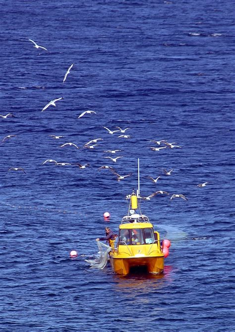 fishing boat hire uk 17 best images about fishing boats on pinterest small
