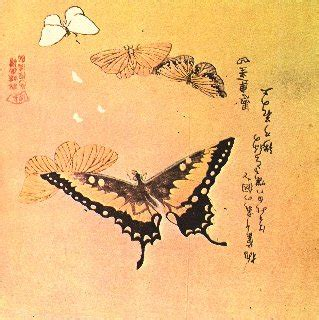 butterfly tattoo meaning in japan the art of the japanese butterfly hubpages