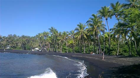 black sand beach the big island hi punaluu county beach park big island hawaii black sand