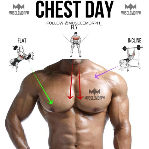 best bulking workouts chest workouts for bulking up eoua