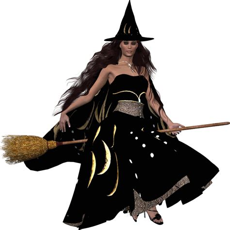 The Witch Day the witches closet a modern day white witch s guide