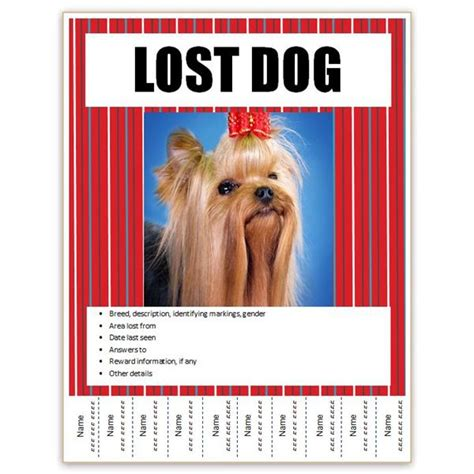 templates for lost pet flyers find free flyer templates for word 10 excellent options