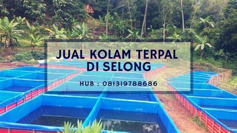 Jual Bak Sortir Lele Surabaya jual kolam terpal di selong hubungi 081319788686