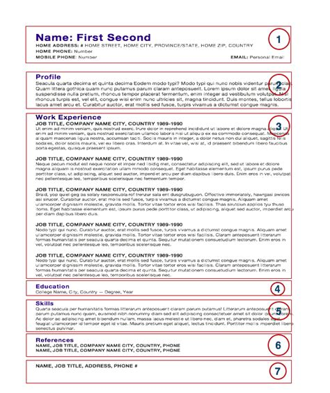 chef cv format download chef s cv resume template anatomy