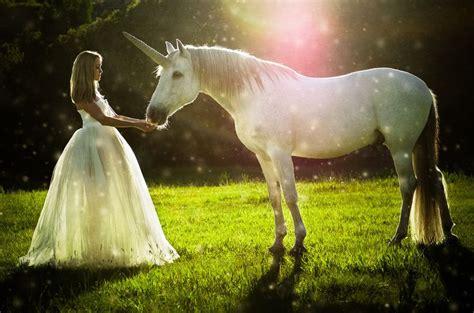unicorn in swinging 79 best unicorn photo shoot images on pinterest