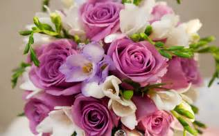 beautiful bouquet of flowers beautiful purple white flowers bouquet wallpapers 2560x1600 399988