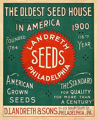 new year seeds kicking the new year seed catalogs that the most