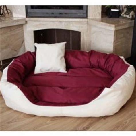 cuscini giganti da interno le migliori cucce per cani da interno classifica e guida