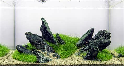 Batu Seryu hungarian aquascaping contest hac gal 233 ria