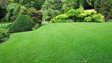 entretien espace vert argenteuil cergy net garden