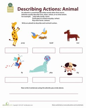 describe yourself pattern all about adverbs describing animal actions worksheet