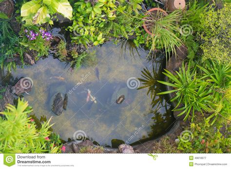 Backyard Landscape Design koi fish in a pond stock photo image 49618977
