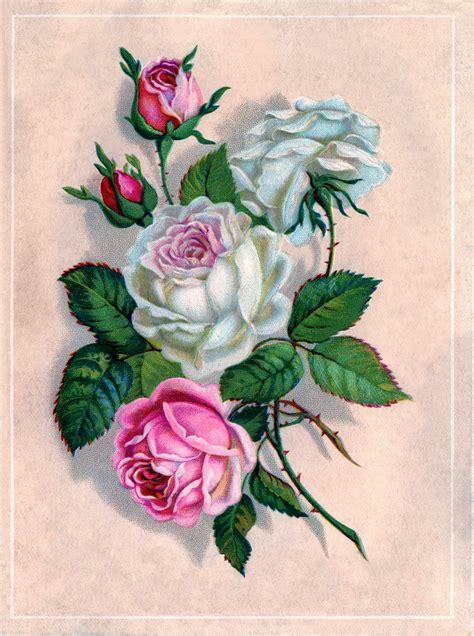imagenes decoupage para imprimir gratis l 225 minas para d 233 coupage flores