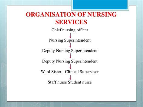 staffing pattern of organization organizing nursing services