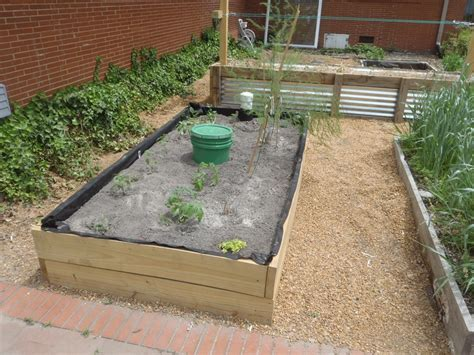 wicking garden bed 17 best images about diy wicking garden beds on