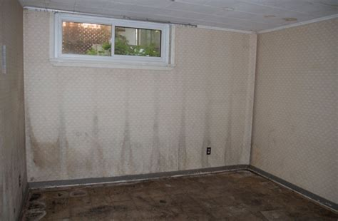 mold in my bedroom renovation health check mold and air quality scott s
