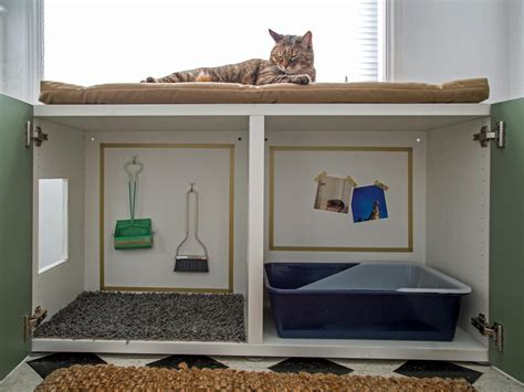 litter box a how to conceal a litter box inside a cabinet hgtv