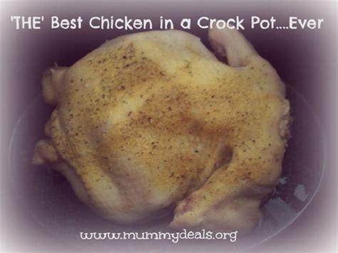 Pdf Crock Pot Recipes Ultimate Crock Pot by The Best Whole Chicken In Crock Pot Recipe