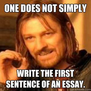 Essay Memes - writing an introduction the hook lhs writing center