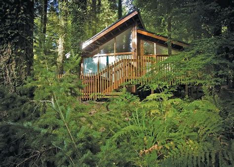 forest of dean lodges in coleford hoseasons