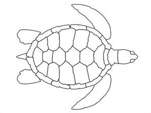 sea turtle template 20 turtle templates crafts colouring pages free