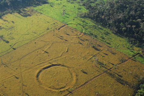 Amazon De | long before making enigmatic earthworks people reshaped