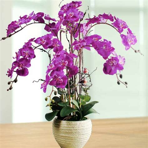 orchid delivery singapore artificial orchids online artificial orchid