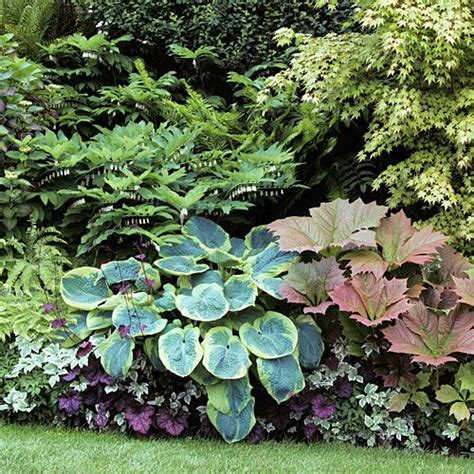 13658 best images about garden on pinterest
