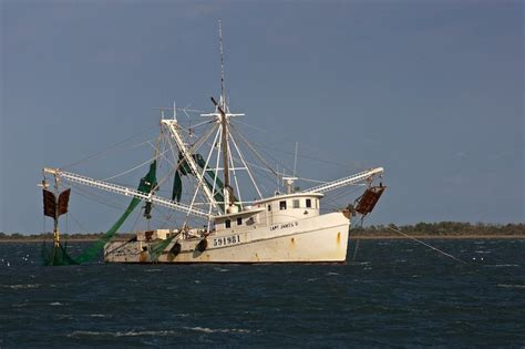shrimp boat excursions 1000 images about barcos de pesca on pinterest bristol