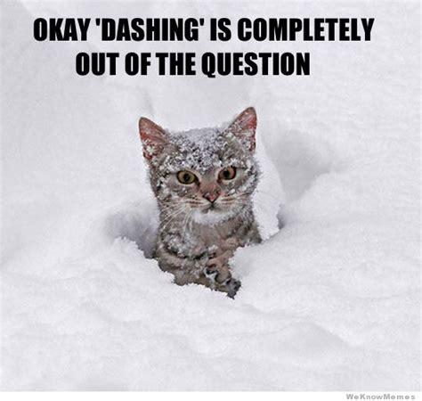 Funny Snow Memes - snow driving meme memes